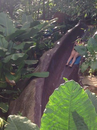 The Springs Resort and Spa: Waterslide at the Perdido Springs! So much fun! And you go fast!