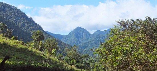 Casa Verde Raw Yoga Hiking Retreat: Our Neighborhood