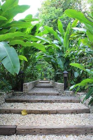 Mandala Spa & Resort Villas: Walkway