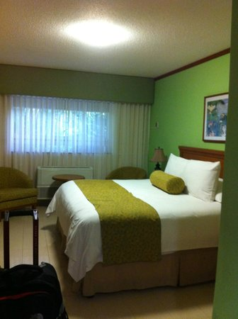 Globales Camino Real: Standard single room