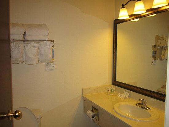 Quality Inn & Suites Patriots Pt.: Bathroom