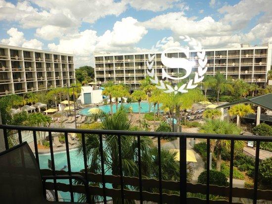 Sheraton Lake Buena Vista Resort: View from room