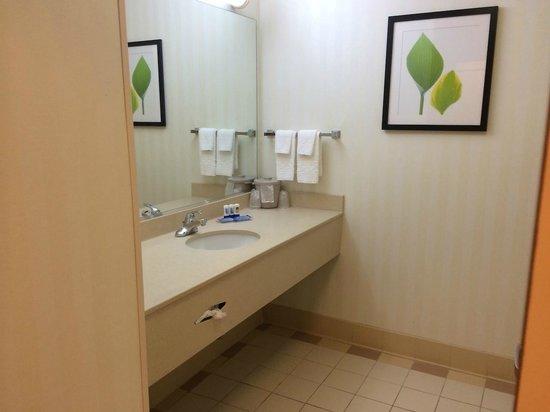 Fairfield Inn & Suites Ankeny: Vanity