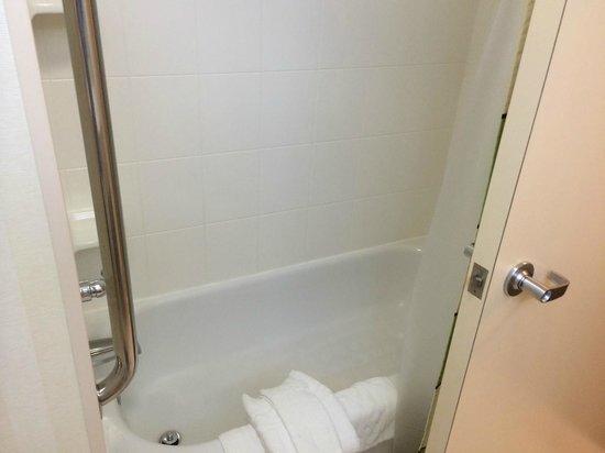 Fairfield Inn & Suites Ankeny: Shower