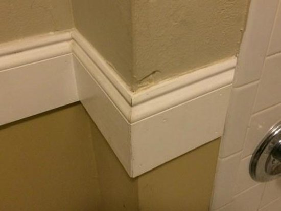 Red Roof Inn Gulf Shores: Bathroom wall busted up