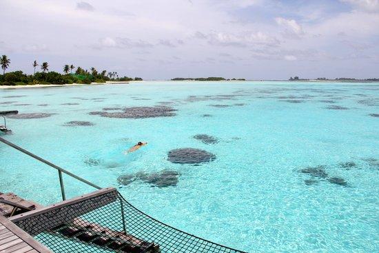 Shangri-La's Villingili Resort and Spa Maldives: Refrescante