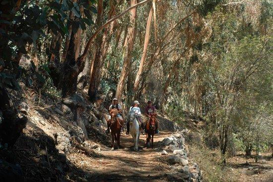 Chiwanku Mayu Horseback Adventure