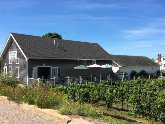 Langworthy Farm Bed and Breakfast: Winery