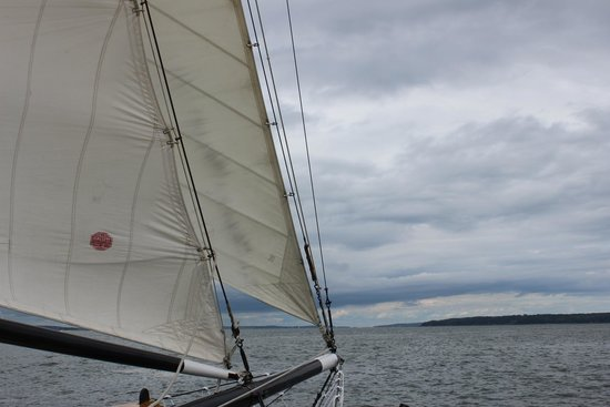 Maine Sailing Adventures: Sail is up