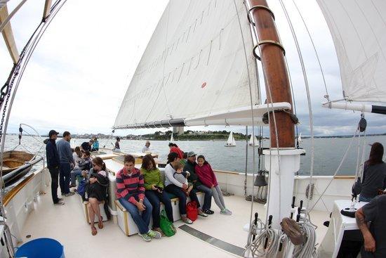 Maine Sailing Adventures: Fisheye view