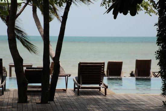 Tango Luxe Beach Villa: Pool view