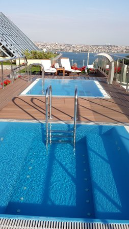 The Ritz-Carlton, Istanbul: Roof top pool