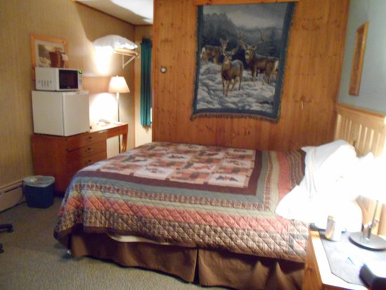 Superior Motel & Suites: Cute room