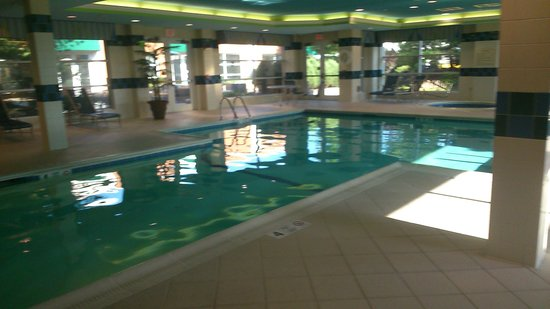 Hilton Garden Inn Buffalo Airport: the lovely pool