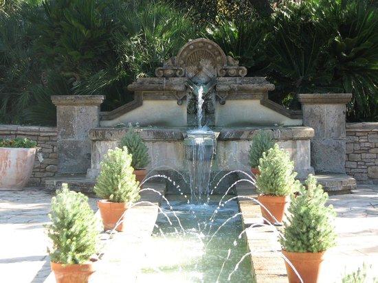 Picture of san antonio botanical garden san antonio tripadvisor