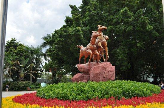Shenzhen Wild-life Zoo: Shenzhen Safari Park