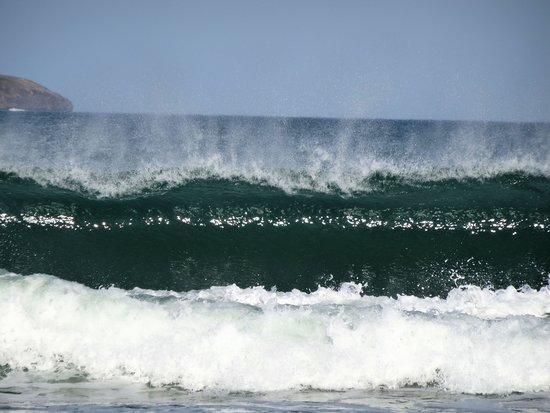 Discovery Parks - Emerald Beach: Emerald Beach, a short walk from park