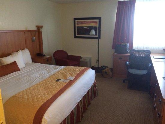 Wyndham Garden Austin: Standard room