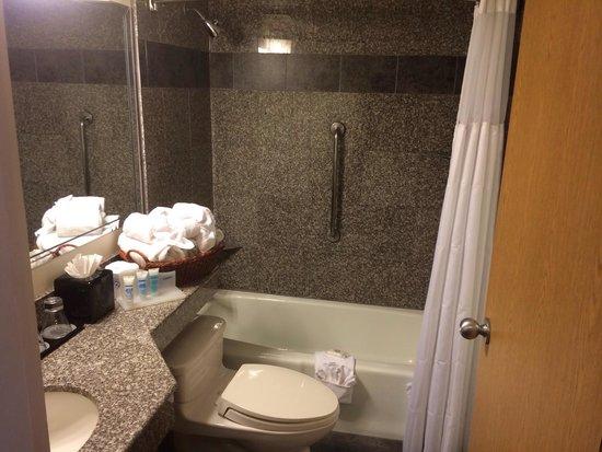 Wyndham Garden Austin: Bathroom