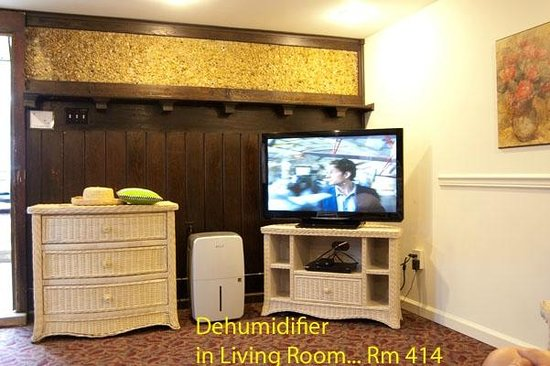 The Stockton Inns: Room 414 needs a dehumidifier  in living room.
