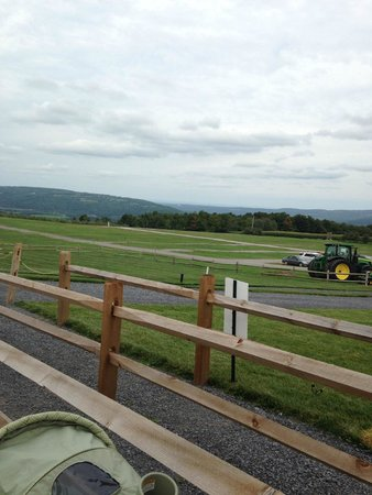 Beak & Skiff: The view while standing in line for the ride out to the orchard on the  tractor
