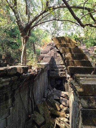 Beng Mealea: 半分残った屋根