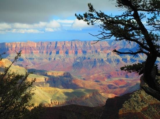 Kaibab Camper Village: one of the views from the North Rim!