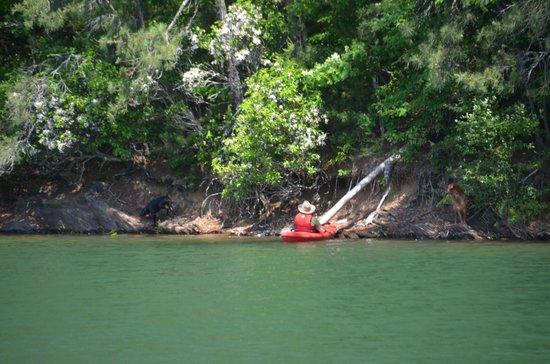 Andrews, NC: Lake Kayaking