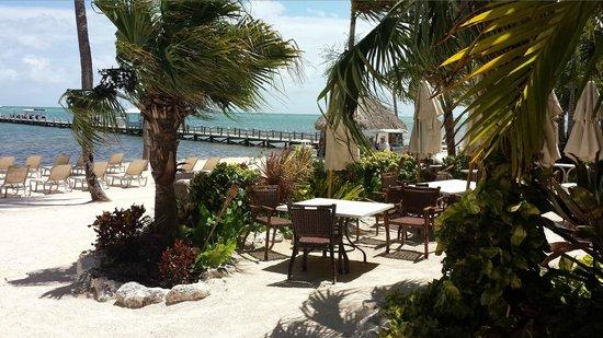 Cheeca Lodge & Spa: Praia