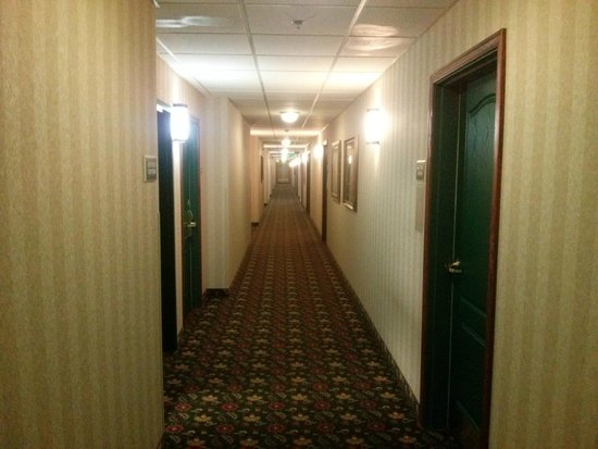 Country Inn & Suites by Radisson, St. Paul Northeast, MN: Pasillos