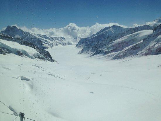 Jungfrau : Vue du glacier