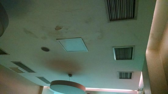 Tunel Residence: Mold on the ceiling
