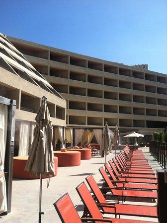 Hyatt Palm Springs : Pool Area