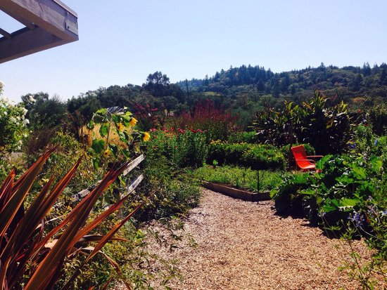 Quivira Vineyards: Garden