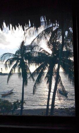 Aqua Venture Reef Club: View of room 1B