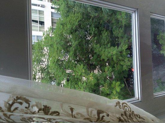A&EM 280 Le Thanh Ton Hotel : premier room has window