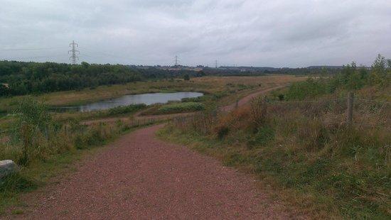 frickley park pond