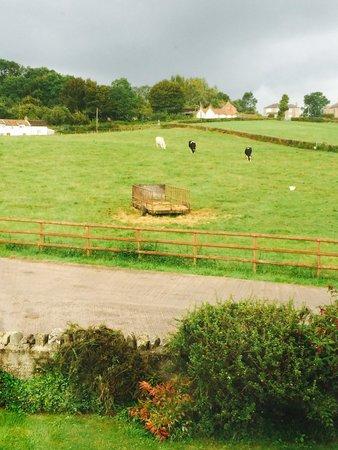 Garden End Farm