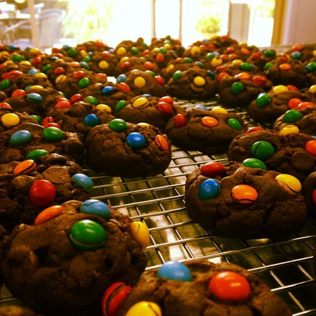 Dunkeld Delights: Tri choc biscuits
