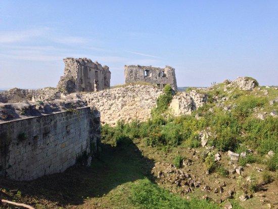 Chateau of Coucy: Ruines du château de coucy.