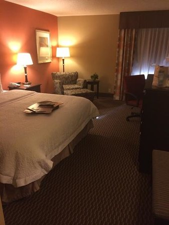 Hampton Inn Asheville - I-26 Biltmore Area: king size bedroom. can be noisy when close to freeway.
