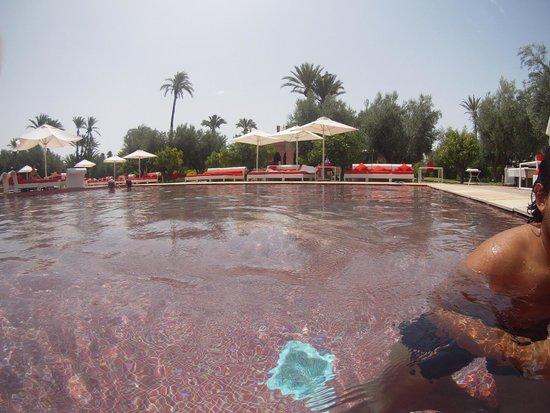 Murano Resort Marrakech : Piscine