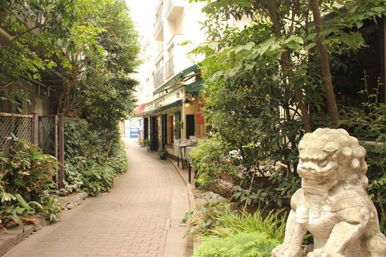 Pet Paradise, Harajuku Takeshita Street