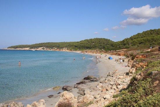 Victoria Playa Hotel Menorca Reviews