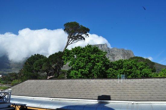 Ashanti Lodge Gardens Backpackers: Table Mountain, from the bar balcony