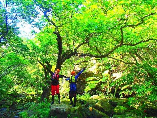 大見謝川 キャニオニング 西表島 KEN GUIDE - Picture of Iriomote Island, Taketomicho Iriomote...