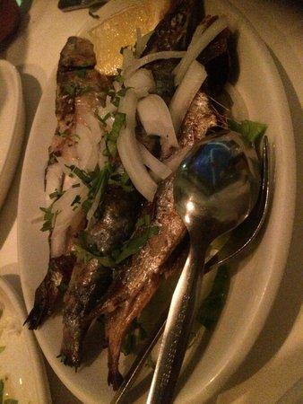 The Four Lanterns: Sardines