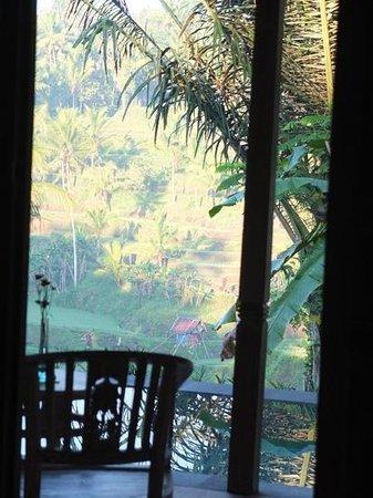 Pondok Sebatu Villa: ベッドからの眺め