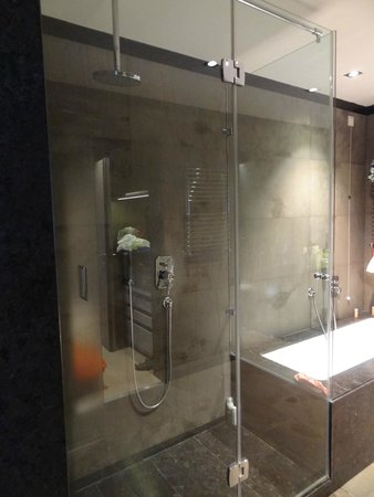 Crowne Plaza Hotel Verona - Fiera: sdb