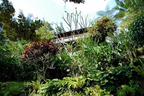 Villa Sarna Ubud: Krishna Villa from the pool